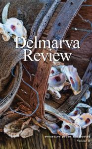 Delmarva Review cover showing shells